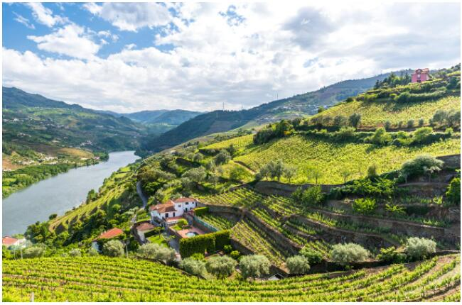 The Porto area is also known for its wines
