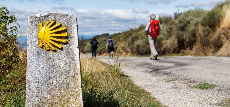Pilgrimage - Santiago De Compostela